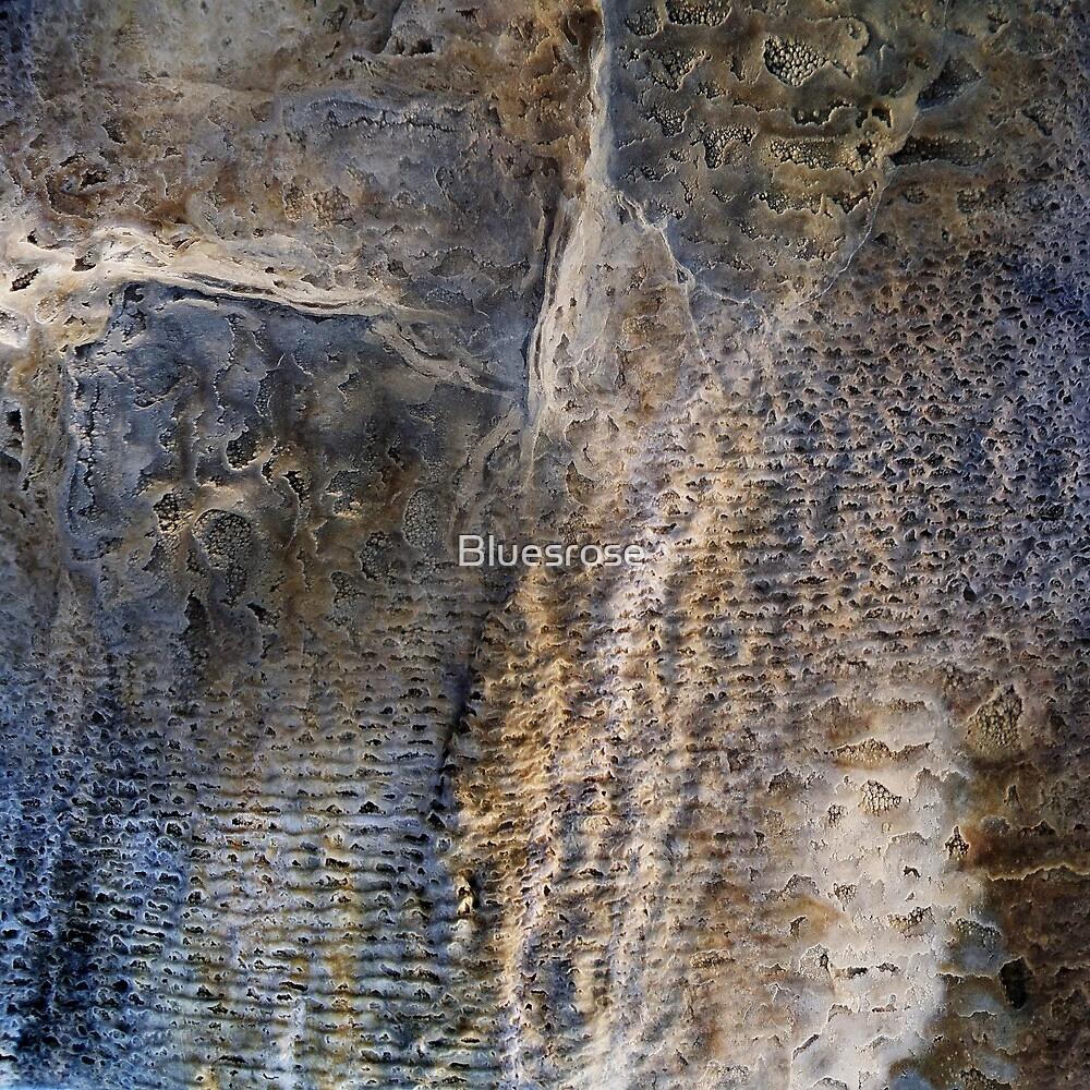 Wall by Bluesrose