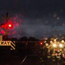 Rail Crossing by Mick Kupresanin