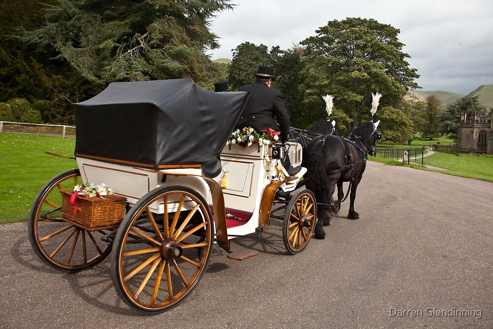 Horse and Carriage by Darren Glendinning