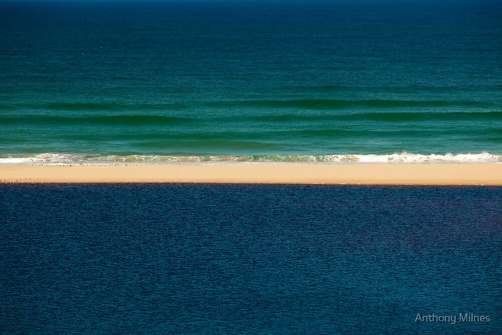 Shades of Blue by Anthony Milnes