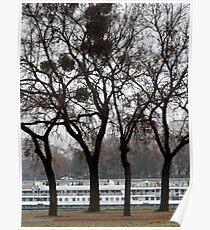 Danube River Bank, Budapest Poster