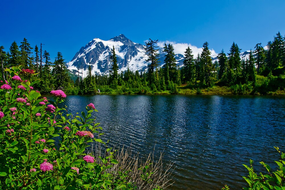Mount Shuksan and Highwood Lake by Dan Mihai