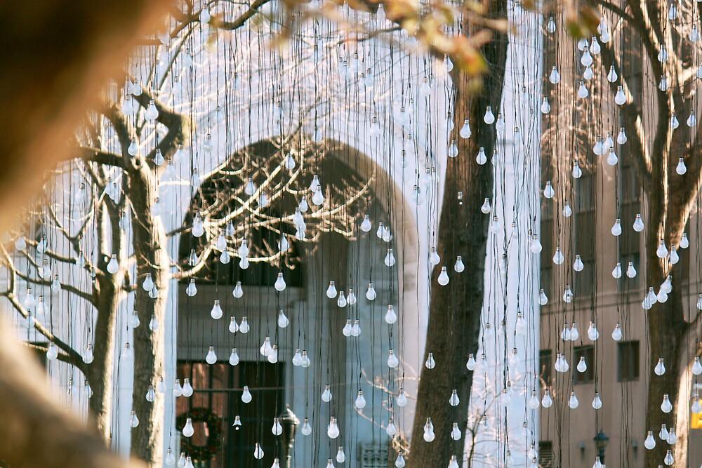A Light Rain by Steve Lindsay