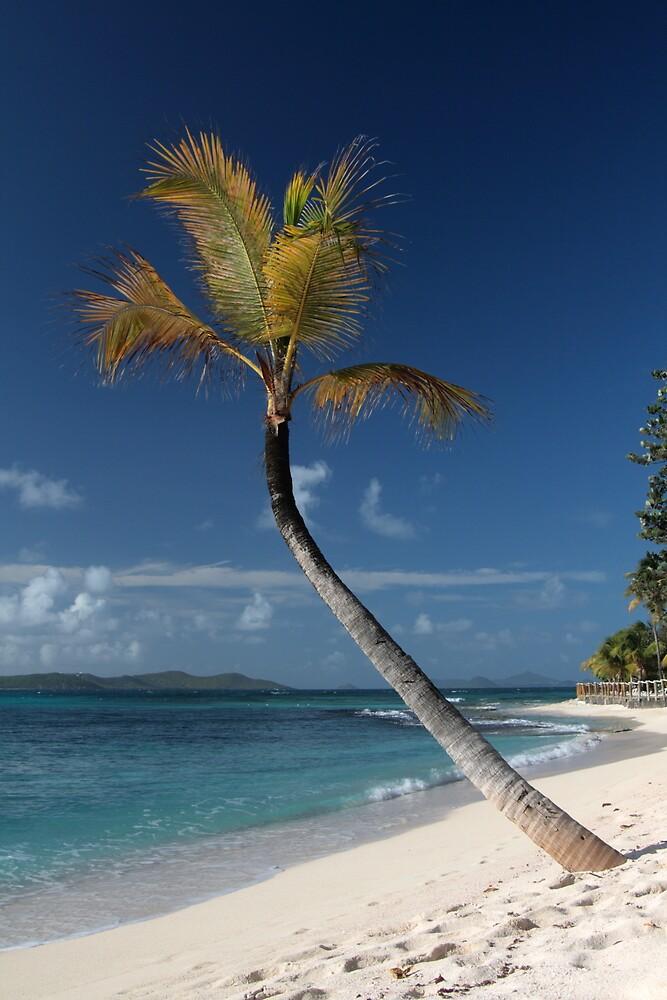 Beach View, Palm Island, Grenadines. by JohnINPIX