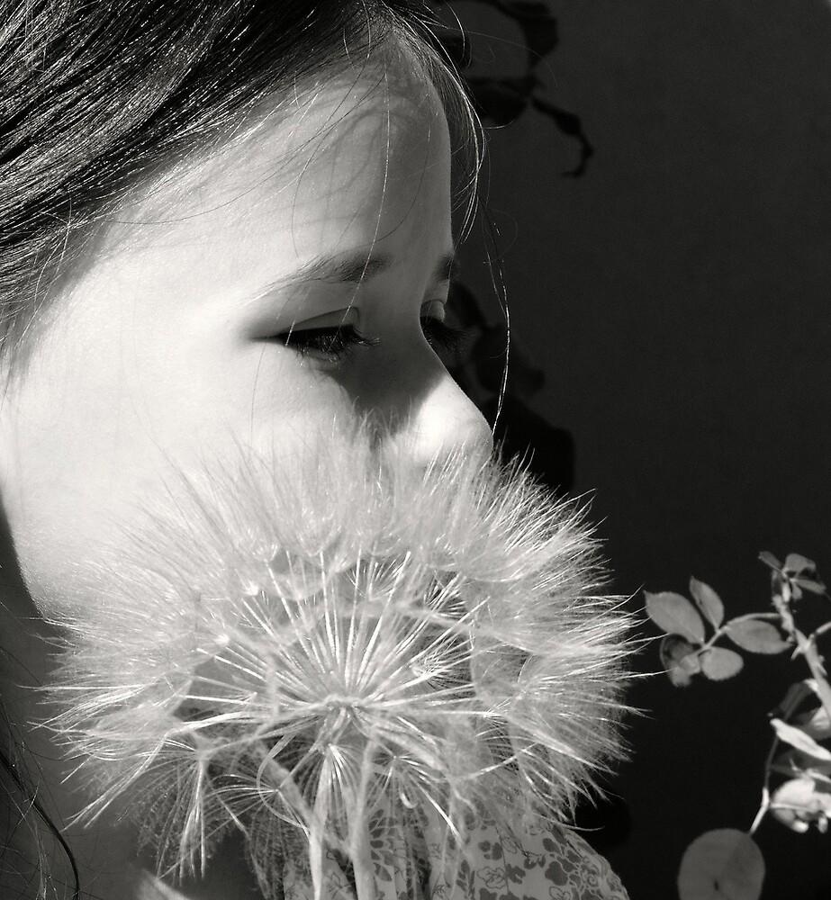 Dandelion Girl by Astrid Allan