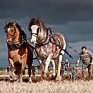 Scottish Ploughing Championships 2011 by colin campbell