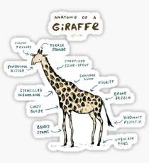 Anatomy of a Giraffe Sticker