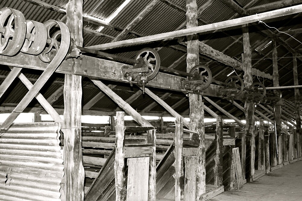 Inside the Lake Mungo Woolshed by styles