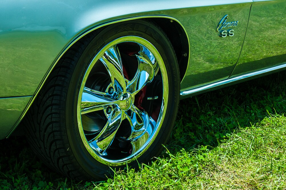 SKY AND GRASS REFLECTED IN CAMERO by Diane Peresie