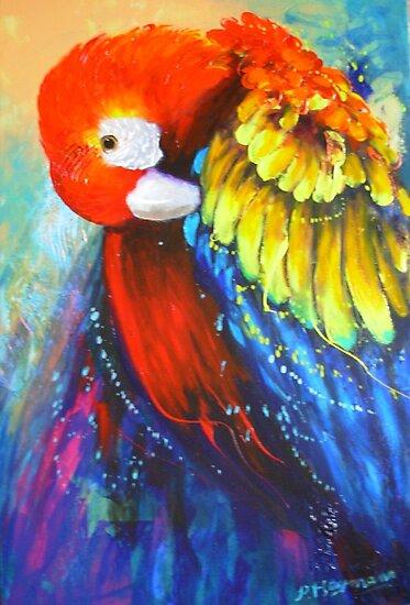 Macaw by patty123