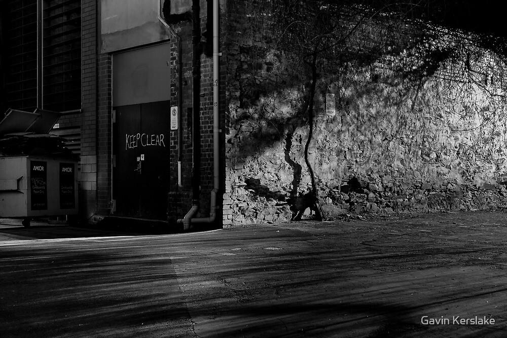 Explore the night # 2 by Gavin Kerslake