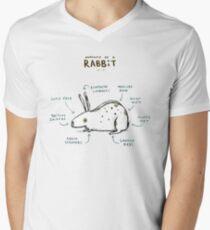 Anatomy of a Rabbit Men's V-Neck T-Shirt