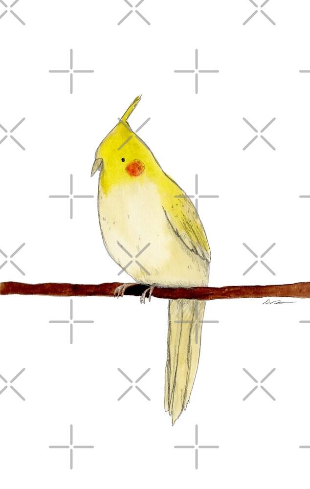 Yellow Cockatiel by Sophie Corrigan