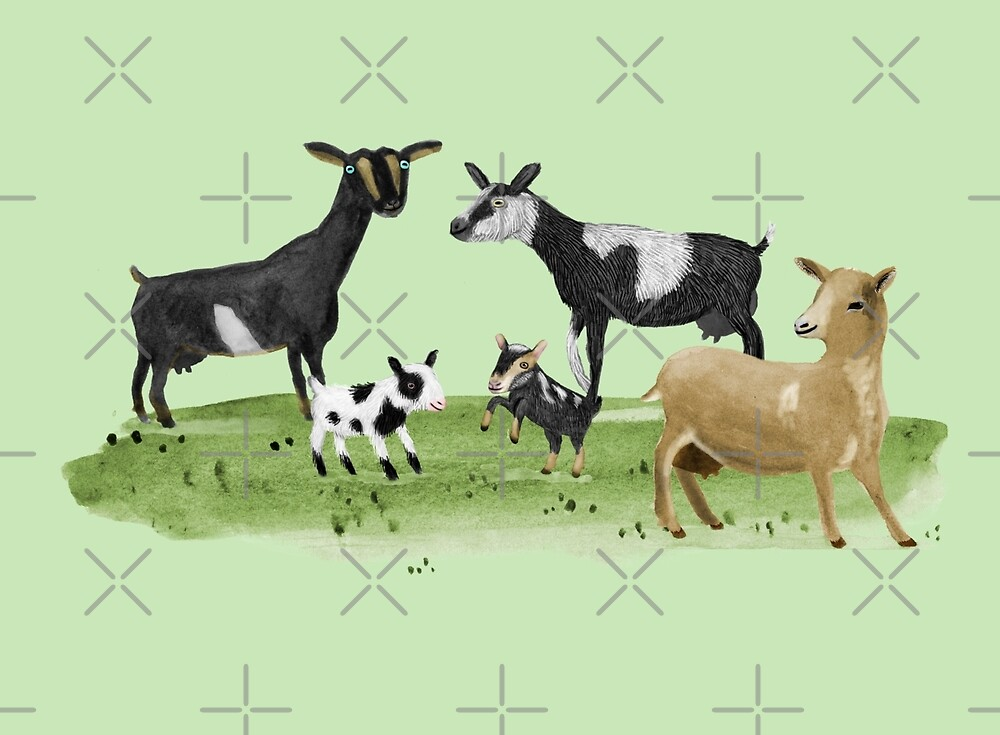 Dairy Goats by Sophie Corrigan