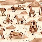 «Baboons» de Sophie Corrigan