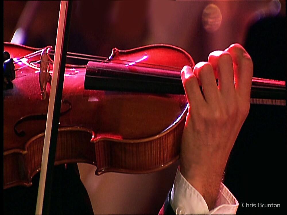 Violin curves by Chris Brunton
