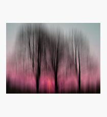 Three Trees in Motion - pink Photographic Print