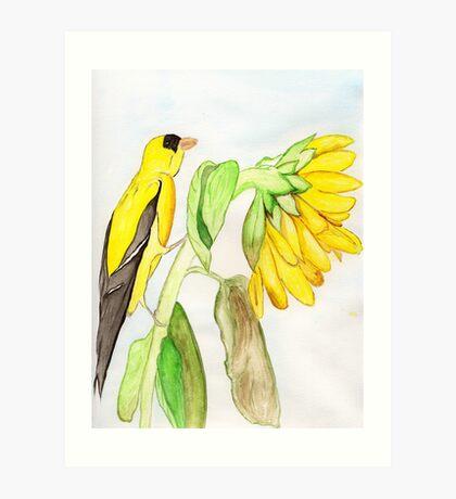 Yellow Bird & a Sunflower Art Print