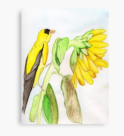 Yellow Bird & a Sunflower Canvas Print