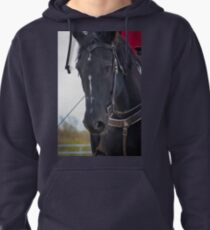 My Brother's Best Friend Pullover Hoodie