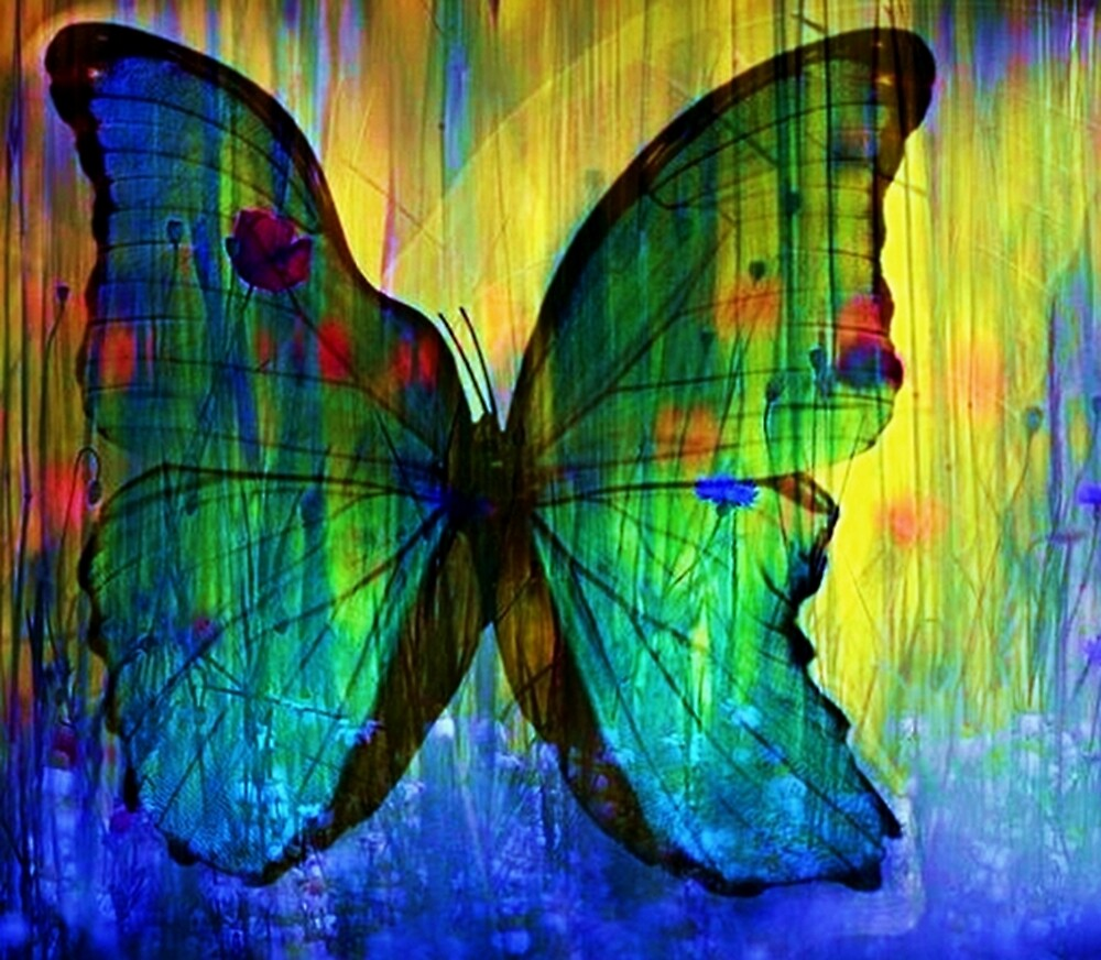 Happiness Is Like A Butterfly by Rick Wollschleger