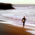Sunset Surfer by amimages