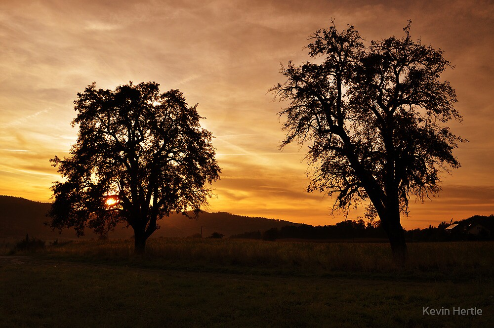 Golden Sunset by Kevin Hertle