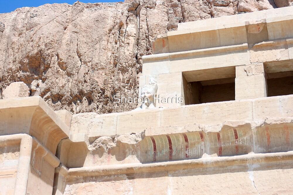 Egypt 2 by Sharon Harris