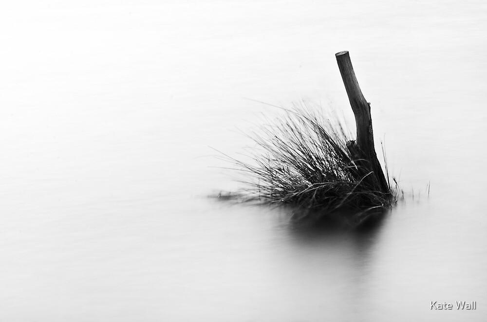 High Key - Lake Weyba by Kate Wall