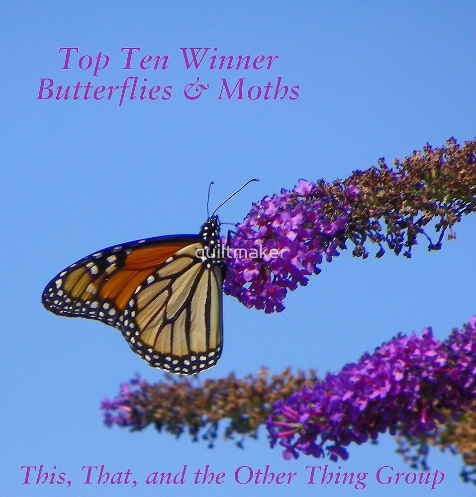 Top Ten Banner for Challenge Winners - Butterflies by quiltmaker