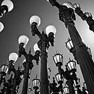 Light Up by jswolfphoto