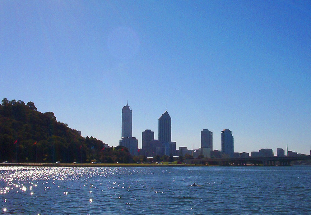 Dolphin Silhouette (Perth) by Robert Phillips