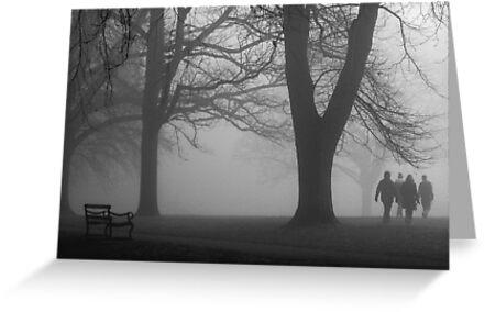 Misty Morning in the Park by KUJO-Photo