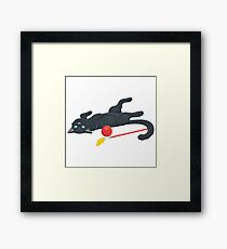 Playful cat with a ball Framed Print