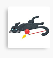 Playful cat with a ball Canvas Print