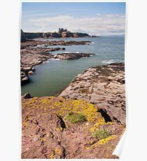 East Lothian coastline Poster