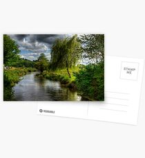 Willow & Water Postcards