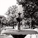 Fountain Dead by Joshua Hoppock