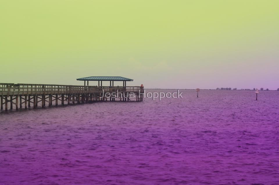 Blemish Bay by Joshua Hoppock