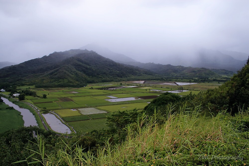 Hanalei Valley by ZWC Photography