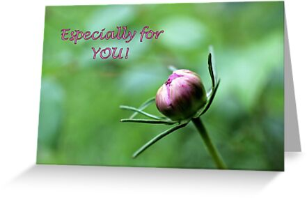 Especially for YOU! by aprilann