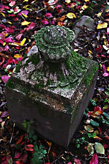 Secret Garden by MYERZ