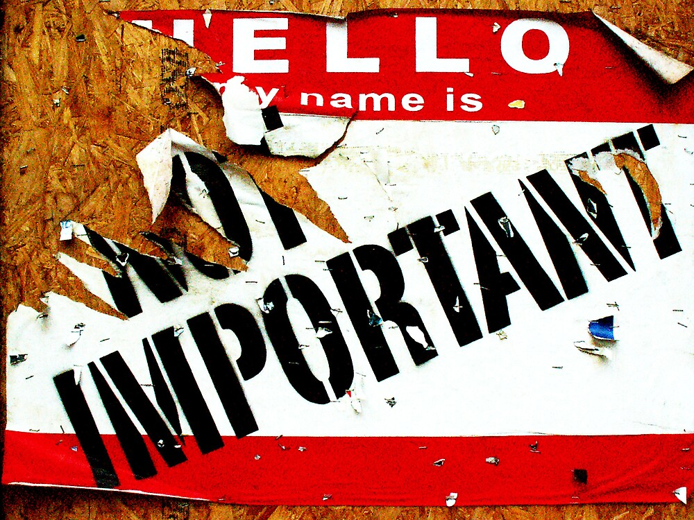 My name is not important  by Gingerbread Graphics