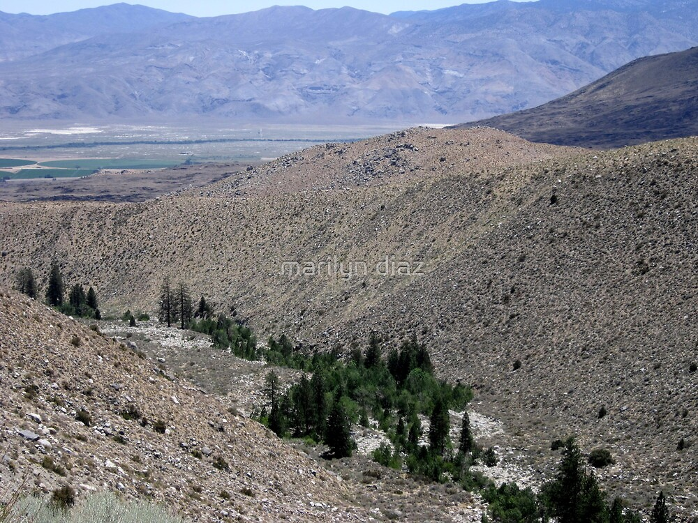 Owens Valley Below by marilyn diaz