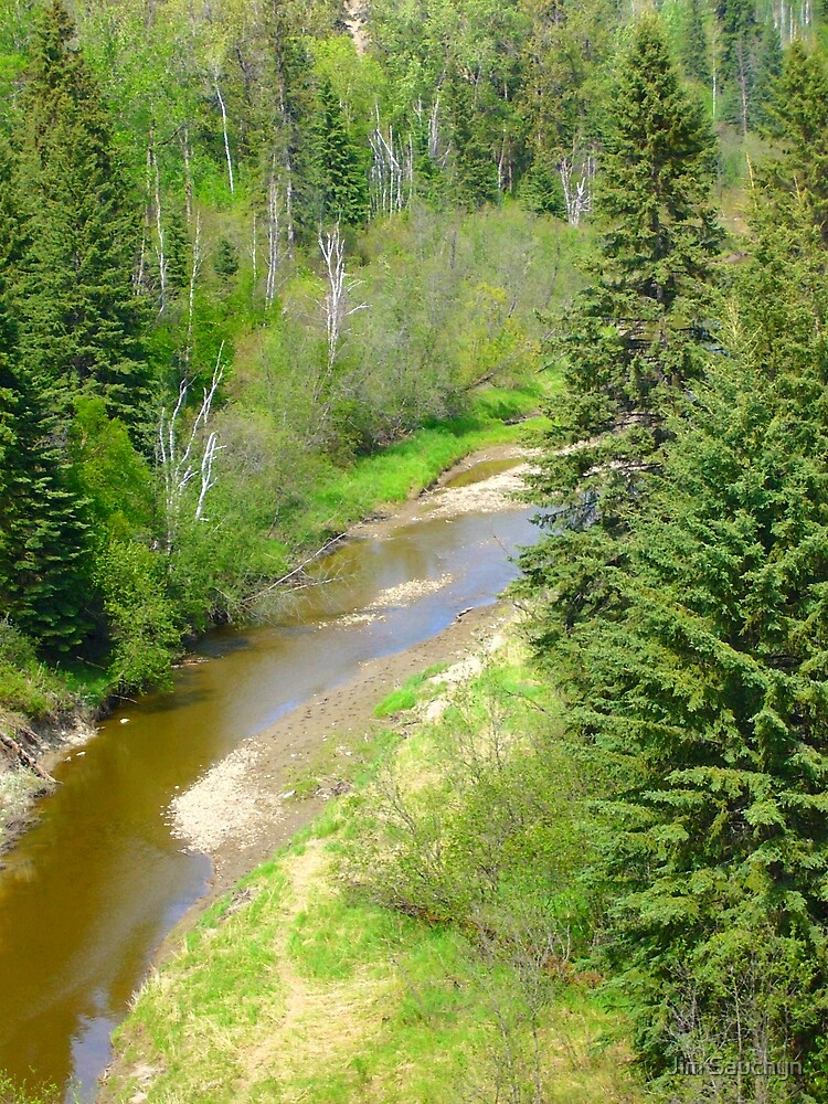 Whitemud Creek in spring by Jim Sauchyn