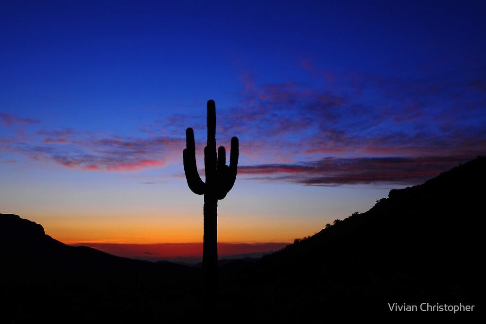 A Desert Sunset by Vivian Christopher