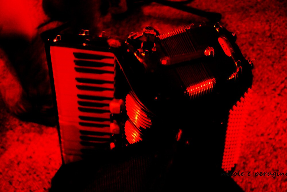 always- the accordion by 11photographs