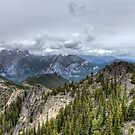 Up in the Peaks by Justin Atkins