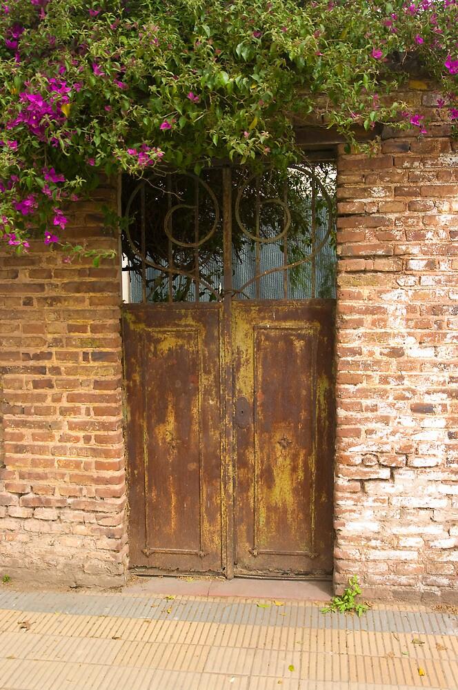 DOOR 2 by gus72