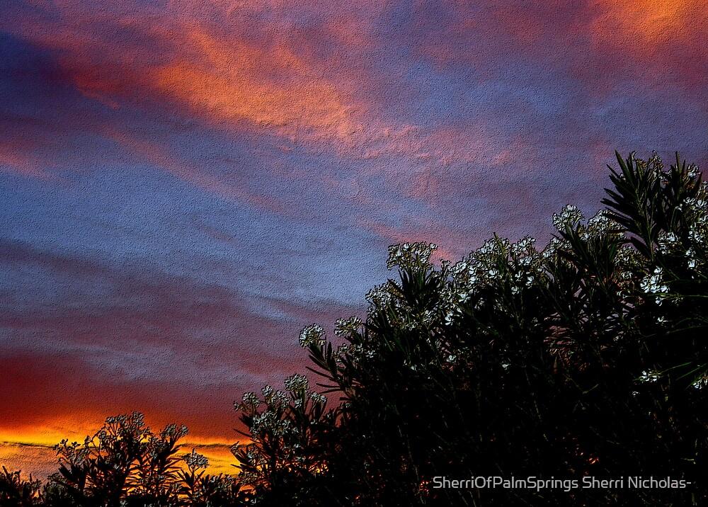 EVENING UNDER THE DESERT SKY,  PALM SPRINGS, CA. by SherriOfPalmSprings Sherri Nicholas-